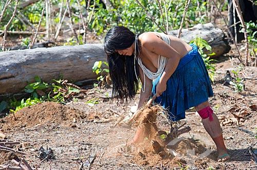 Detalhe de mulher indígena da aldeia Aiha da tribo Kalapalo colhendo mandioca - ACRÉSCIMO DE 100% SOBRE O VALOR DE TABELA  - Querência - Mato Grosso (MT) - Brasil