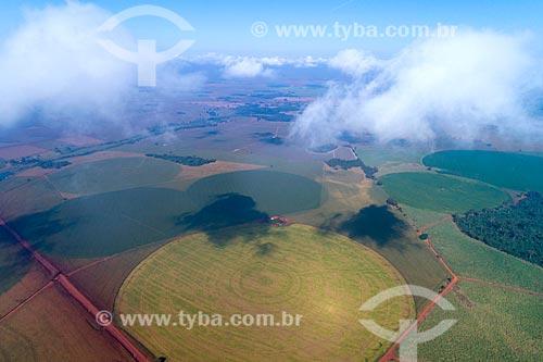 Foto feita com drone de plantações irrigadas com pivô central  - Guaíra - São Paulo (SP) - Brasil