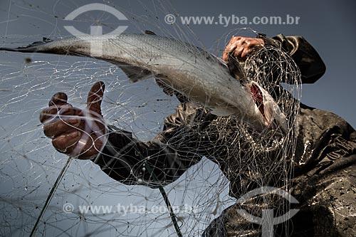 Detalhe de pescador retirando peixe da rede  - Rio de Janeiro - Rio de Janeiro (RJ) - Brasil