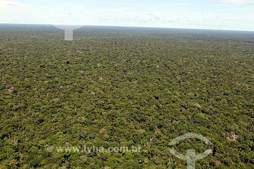 Floresta Amazônica   - Amazonas (AM) - Brasil