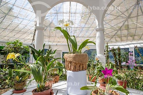 Interior do orquidário do Jardim Botânico do Rio de Janeiro  - Rio de Janeiro - Rio de Janeiro (RJ) - Brasil