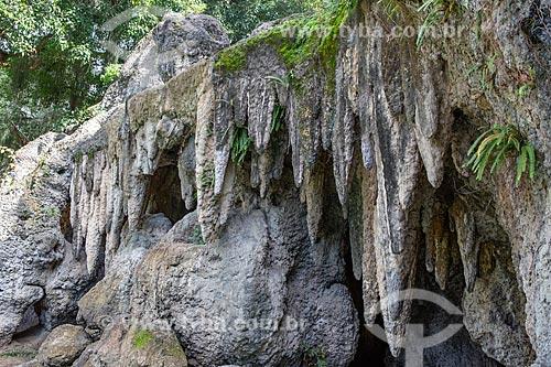 Detalhe da gruta no Parque da Quinta da Boa Vista  - Rio de Janeiro - Rio de Janeiro (RJ) - Brasil