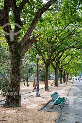 Alameda no Parque da Quinta da Boa Vista  - Rio de Janeiro - Rio de Janeiro (RJ) - Brasil