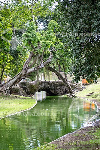 Ponte sobre canal no Parque da Quinta da Boa Vista  - Rio de Janeiro - Rio de Janeiro (RJ) - Brasil