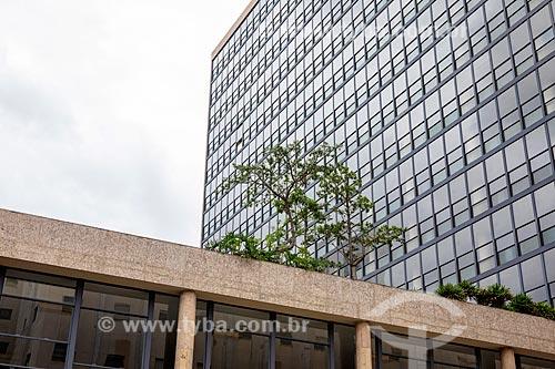 Árvore no jardim suspenso do Edifício Gustavo Capanema (1945) - antigo Ministério da Educação, atual sede do Ministério da Cultura no Rio de Janeiro  - Rio de Janeiro - Rio de Janeiro (RJ) - Brasil
