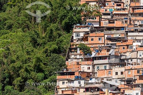 Vista da divisão entre a vegetação e a Favela do Cerro Corá  - Rio de Janeiro - Rio de Janeiro (RJ) - Brasil