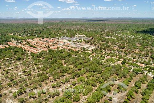 Foto feita com drone de pomar de caju da Fazenda Uruanan Cione  - Chorozinho - Ceará (CE) - Brasil