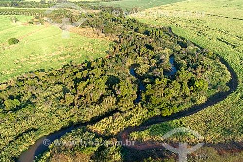 Foto feita com drone do Ribeirão dos Porcos  - Taquaritinga - São Paulo (SP) - Brasil