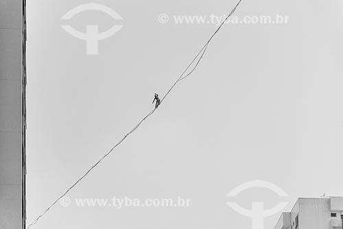 Praticante de slackline entre os prédios do Condomínio Residencial Ilha Pura Vila dos Atletas - edifícios onde os atletas se hospedaram durante os Jogos Olímpicos - Rio 2016  - Rio de Janeiro - Rio de Janeiro (RJ) - Brasil
