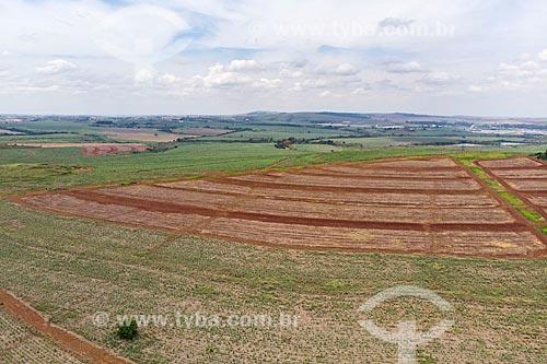 Foto feita com drone de plantação na zona rural da cidade de Rio Claro  - Rio Claro - São Paulo (SP) - Brasil