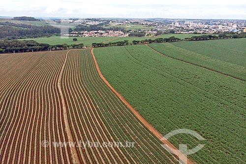 Foto feita com drone de canavial com a cidade de Araras ao fundo  - Araras - São Paulo (SP) - Brasil