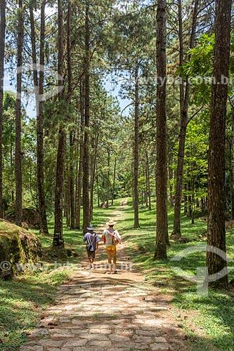Homens em trilha do Camping Clube do Brasil entre pinheiros  - Resende - Rio de Janeiro (RJ) - Brasil