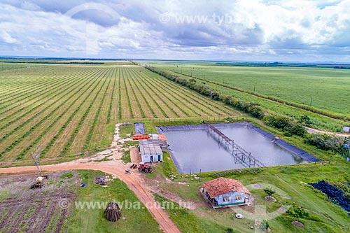 Foto feita com drone de pomar de limão irrigado pelo Rio São Francisco  - Neópolis - Sergipe (SE) - Brasil